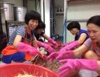 2017년 두번째 무료급식 봉사활동(서귀포교회)